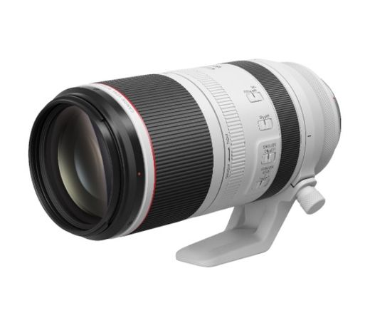 Canon RF 100-500mm f/4-7.1L IS USM