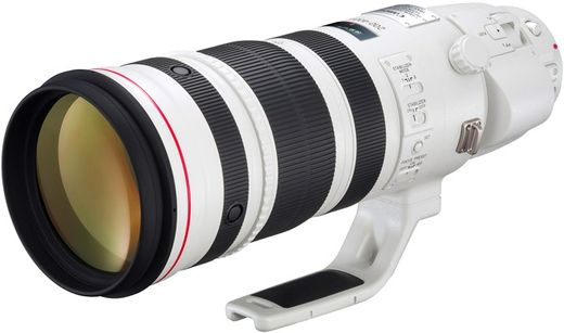 Canon EF 200-400mm f/4 L IS USM 1.4x