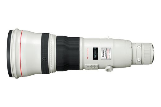 Canon EF 800mm f/5.6 L IS USM superteleobjektiivi